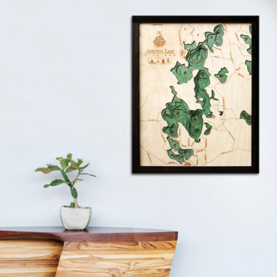 Arbutus Lake 3d wood map, Arbutus poster