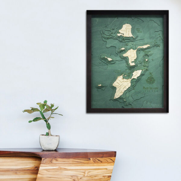 Bass Islands Lake Erie Wood map 3d poster