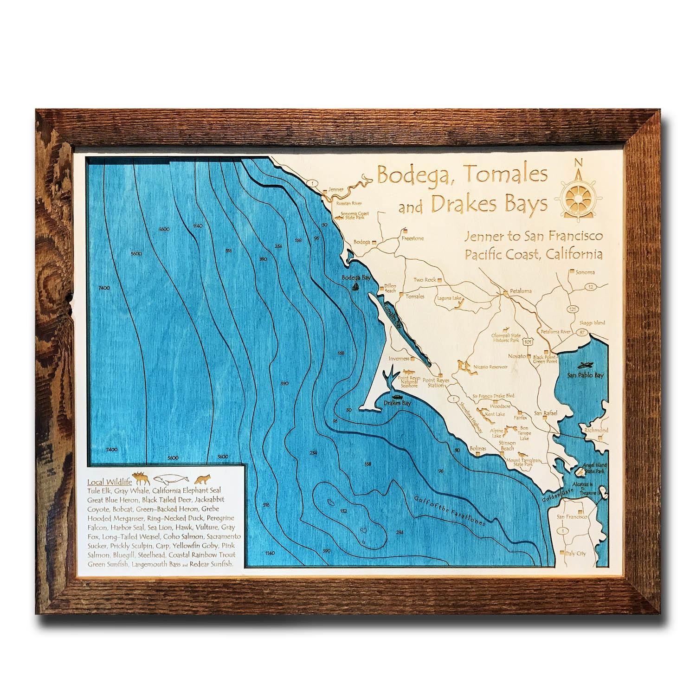 Bodega Wood Map