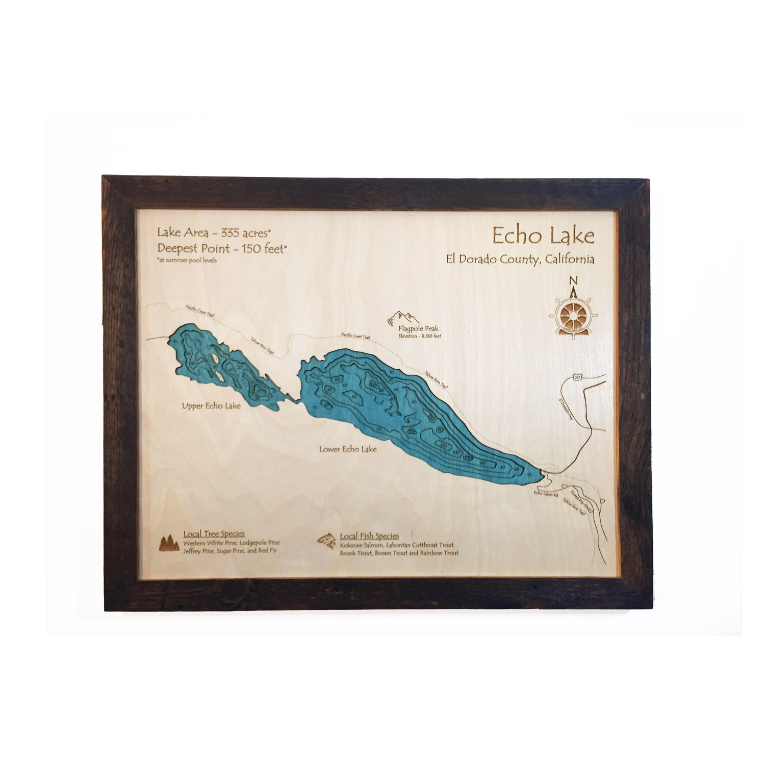3D Wood Map of Echo Lake