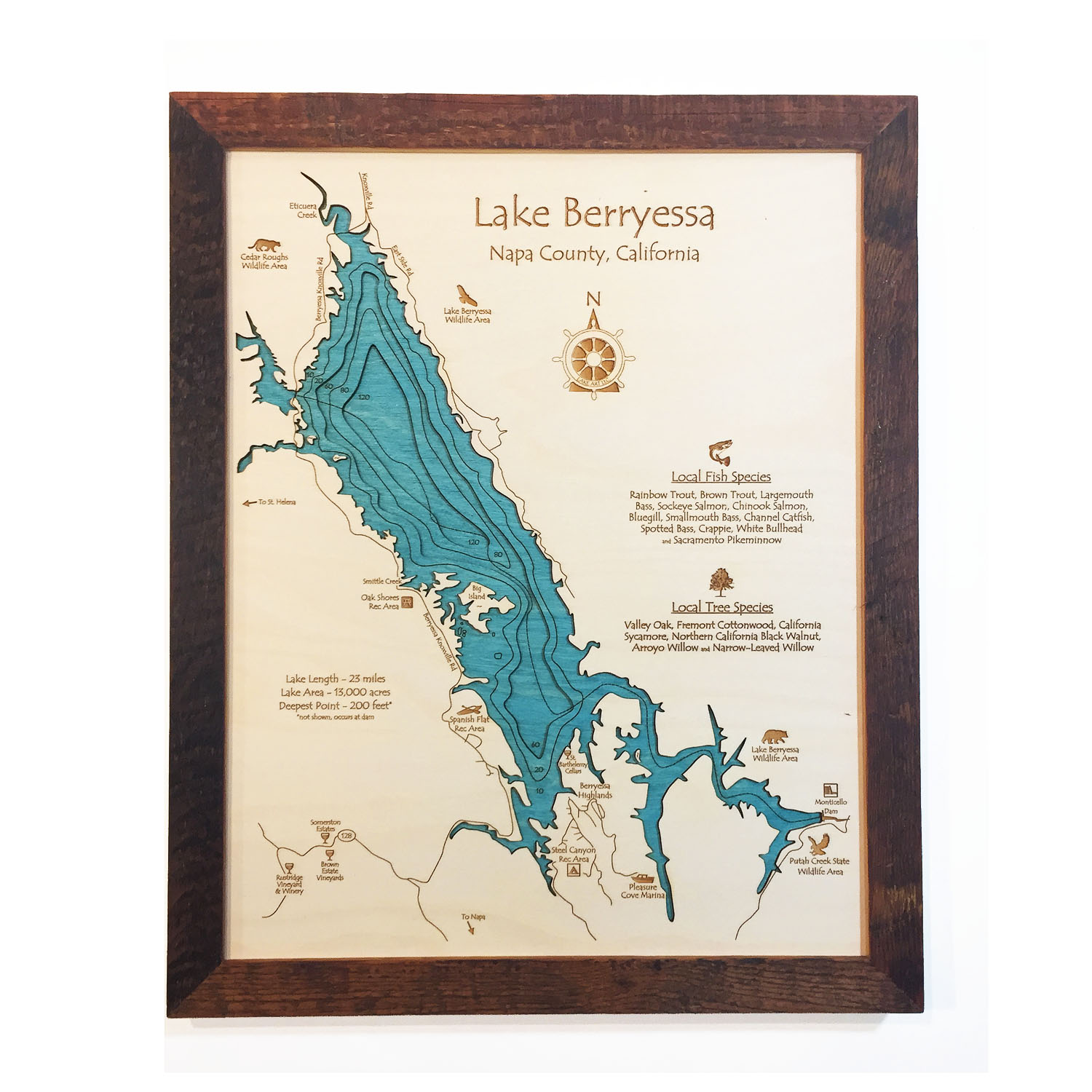 Lake Berryessa Wood Map