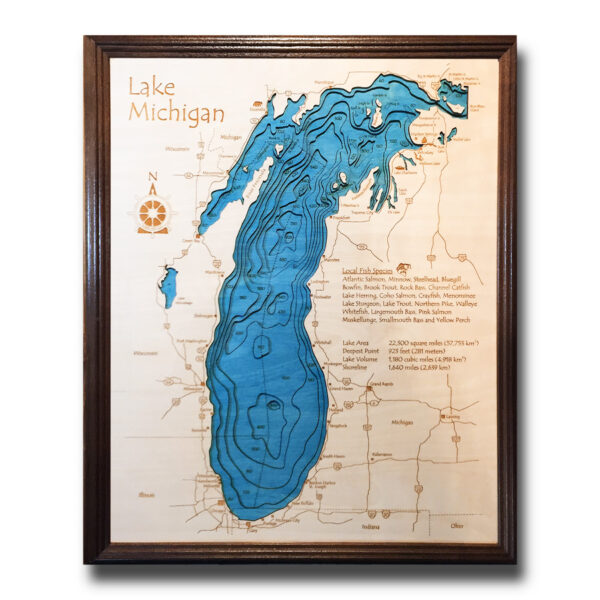 Lake Michigan Wood Map, Framed Wall Art