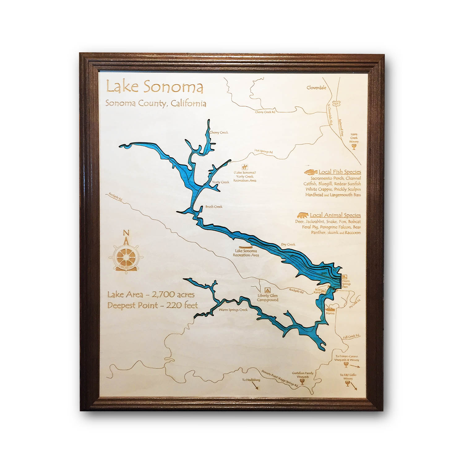 Lake Sonoma Nautical Map