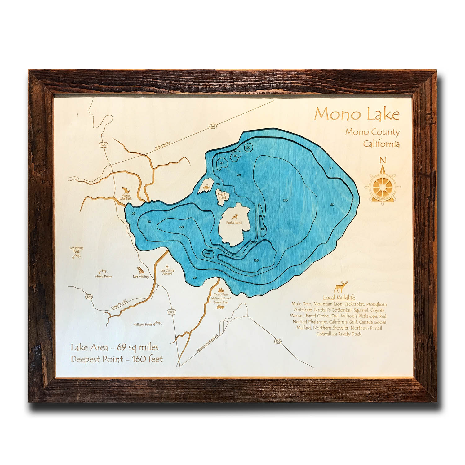 Mono Lake Wood Map