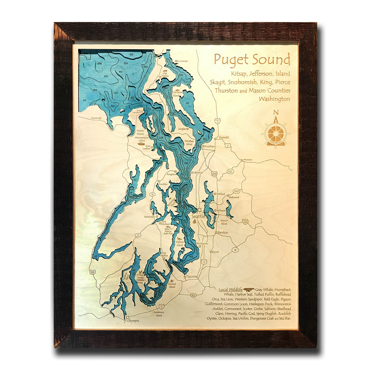 Puget Sound Nautical Map