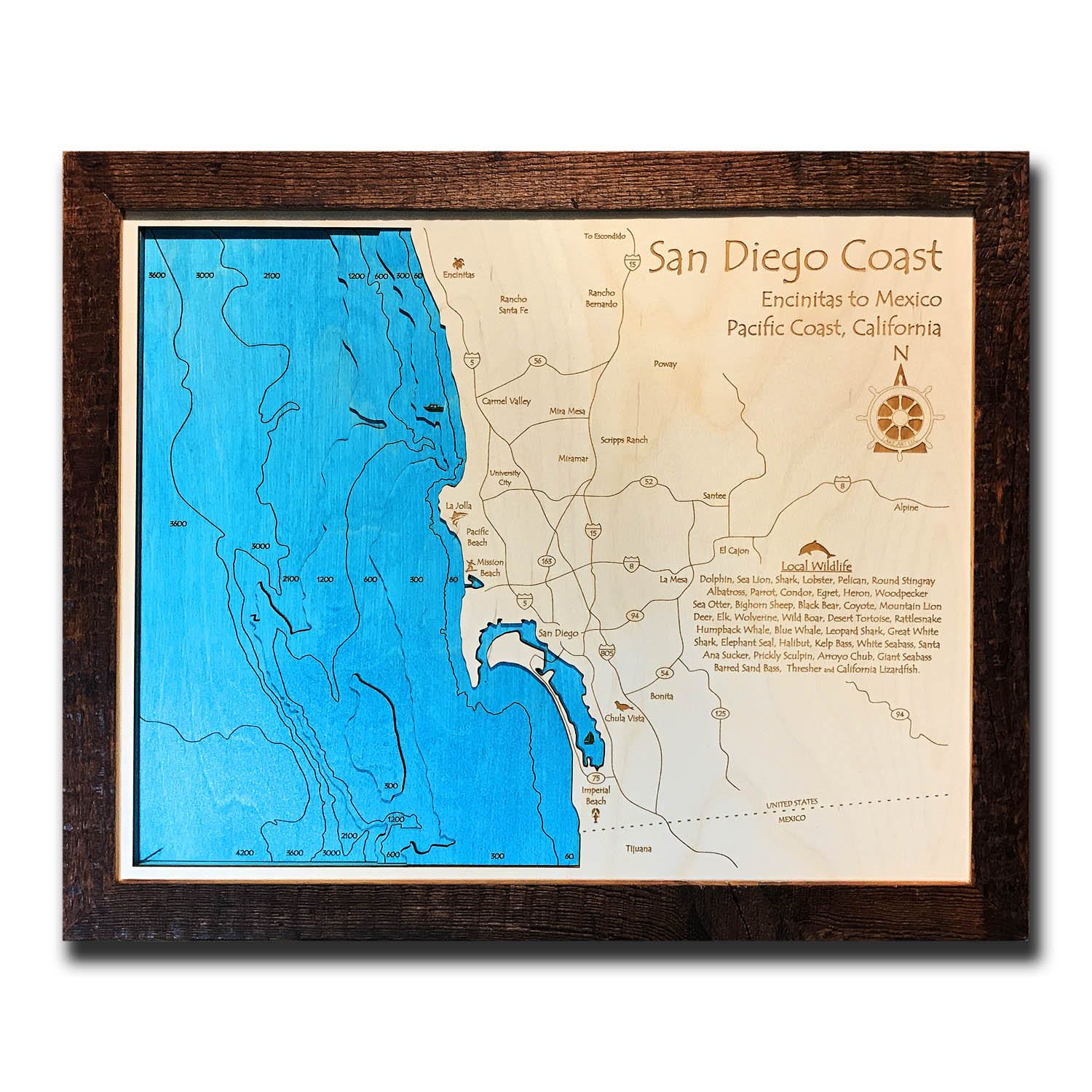 San Diego Nautical Wood Map