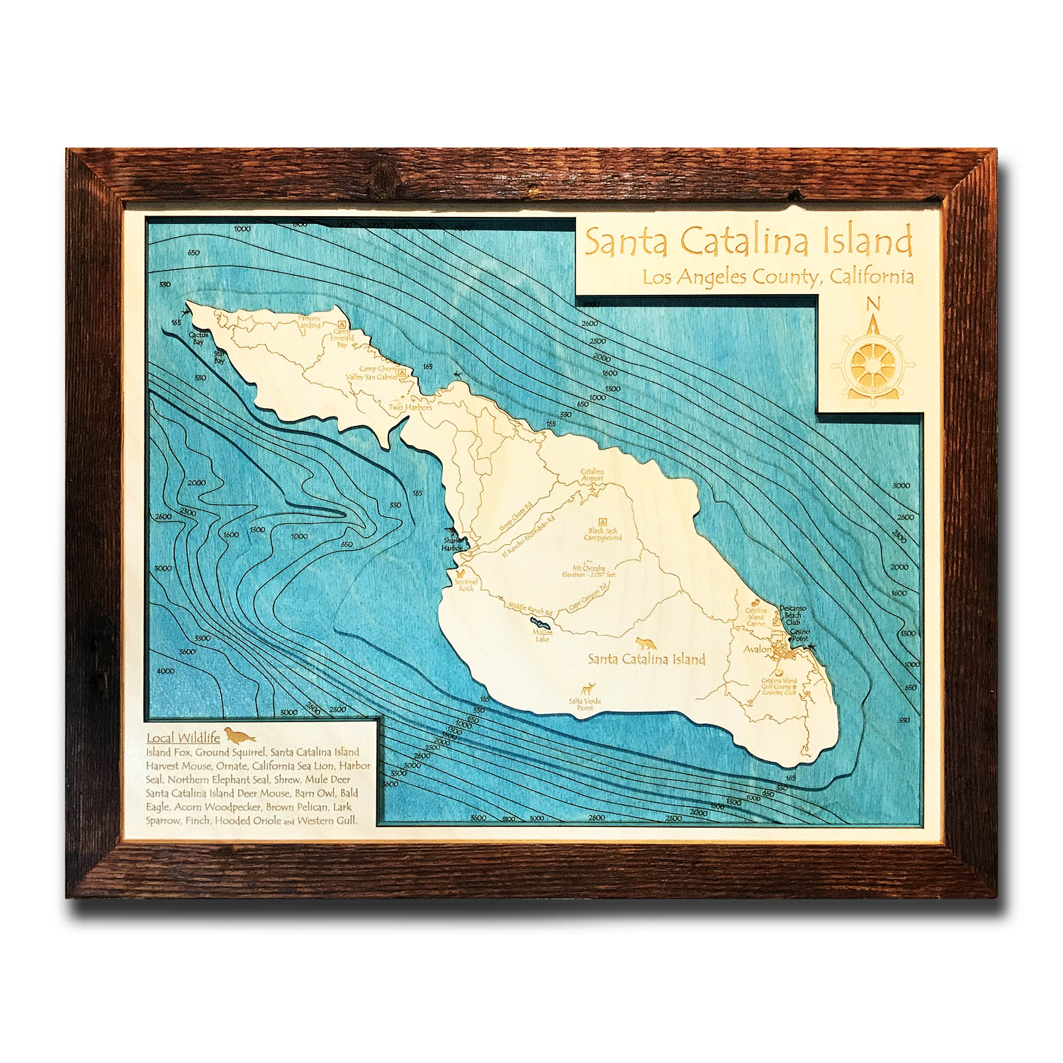 Catalina California Nautical Wood Map
