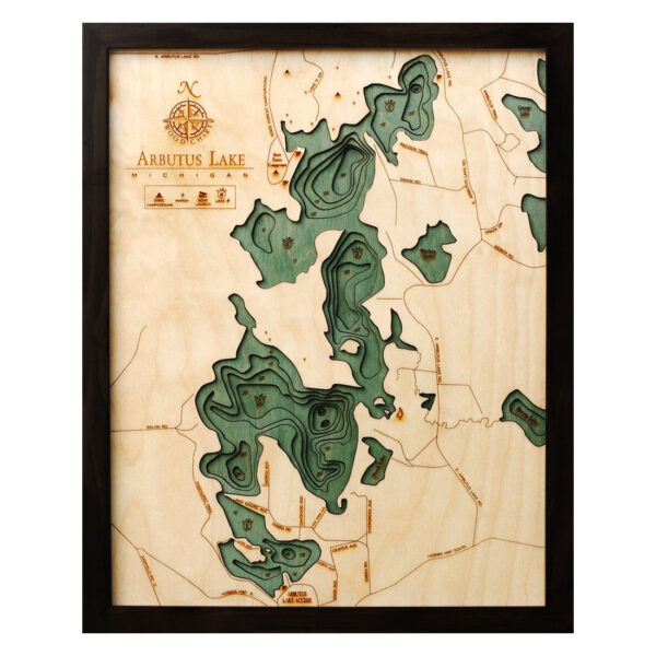 arbutus lake 3d wood map
