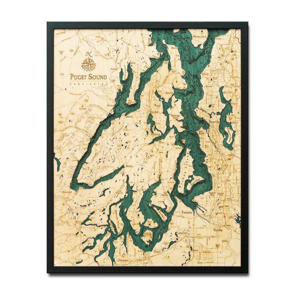3d topographic wood chart puget sound map