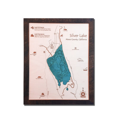 Silver Lake 3d wood map