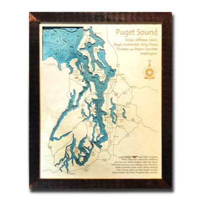 puget sound 3d wood topo map