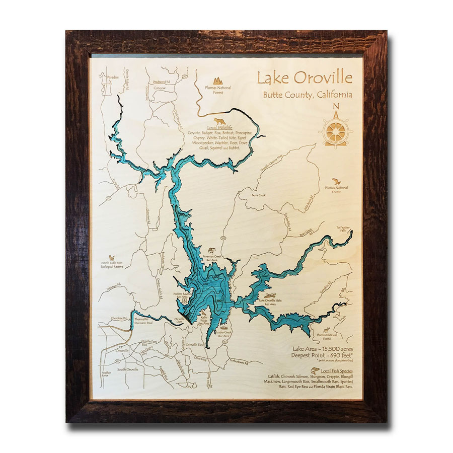 3D Wood Map of Lake Oroville