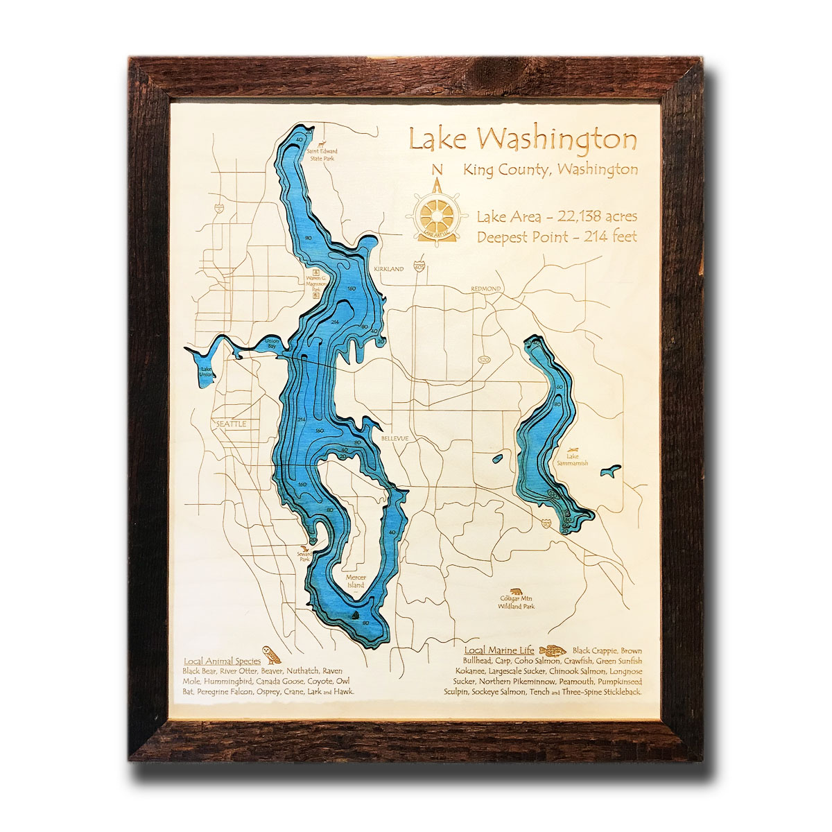 Lake Washington, WA Single-Depth Wood Map, 11
