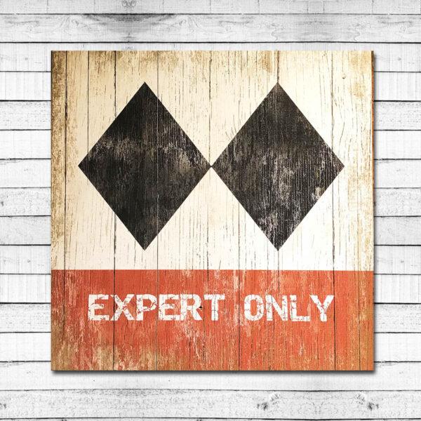 Expert Only Retro Ski Resort Sign
