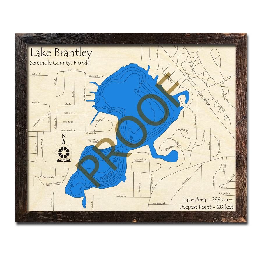 Lake Brantley, FL Wood Map   3D Topographic Wood Chart