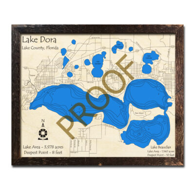 Lake Dora Wood Map in Florida 3d
