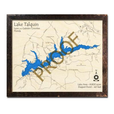Lake Talquin wood map in 3d
