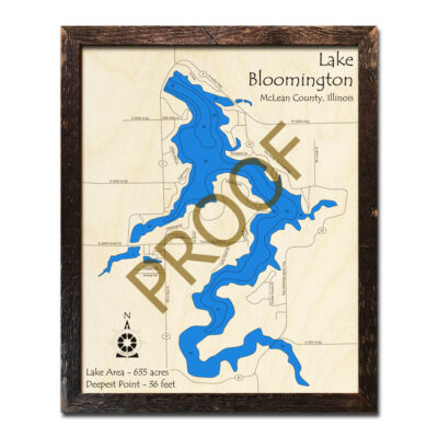 Lake Bloomington IL Wood Map 3d