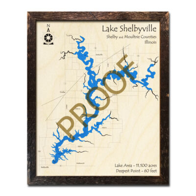 Lake Shelbyville IL Wood Map 3d