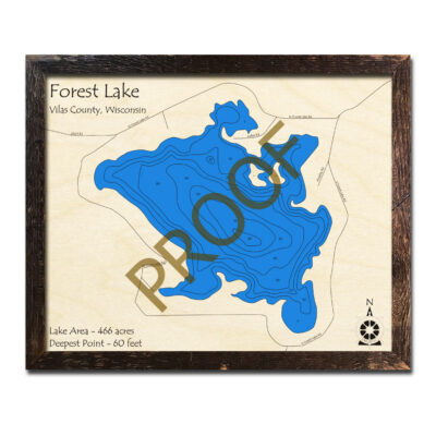 Forest Lake WI 3d Wood Map