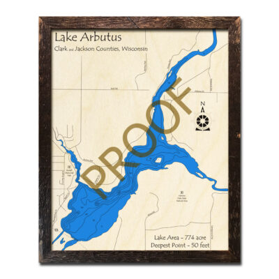 Arbutus Lake 3D Wooden Map
