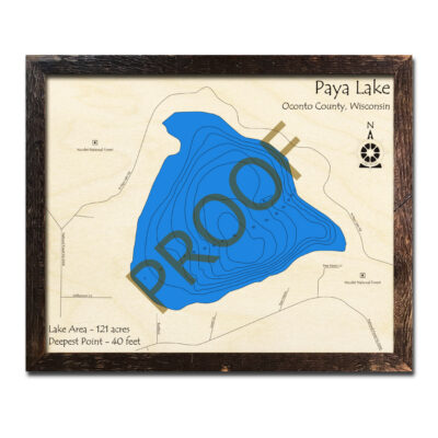 Paya Lake 3d wood map