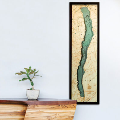 Canandaigua Lake 3d wood map