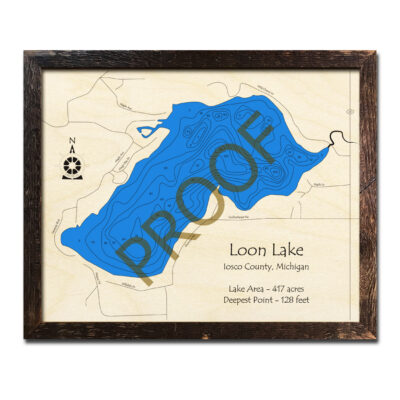Loon Lake MI 3d wood map Iosco County