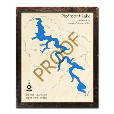 Piedmont Lake 3d wood map