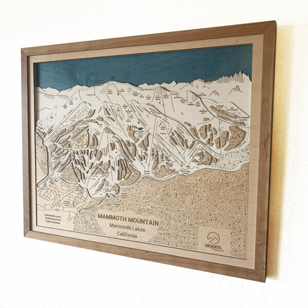 Mammoth Mountain Trail Map in 3D