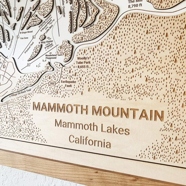 Mammoth Mountain Trail Map zoomed in